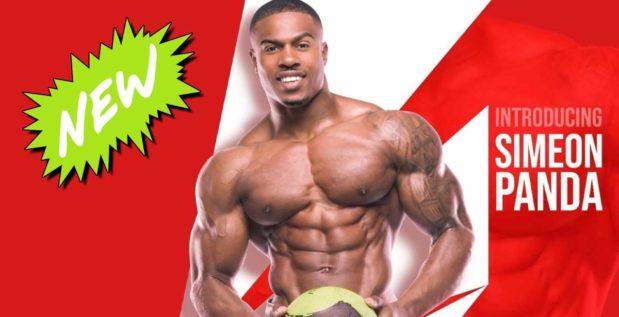 Trenz trainingsplan pit Bodybuilder